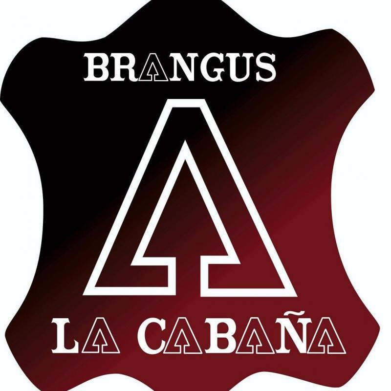 BRANGUS LA CABAÑA
