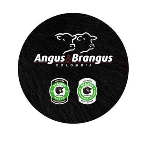 CORONA ANGUS & BRANGUS